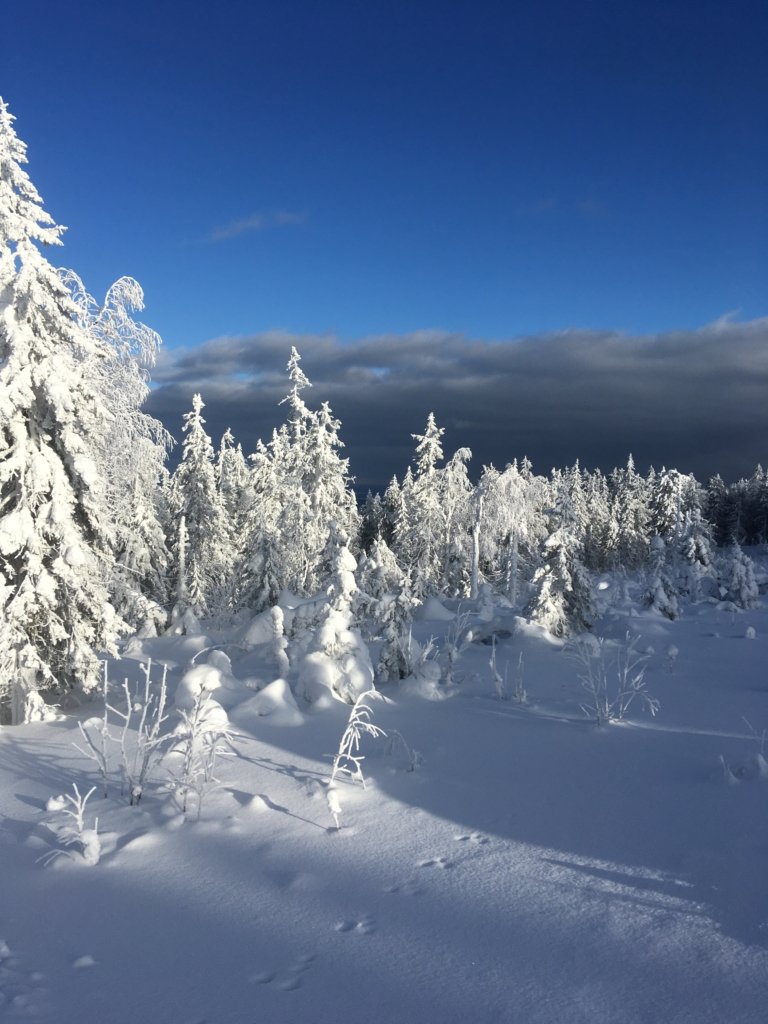 Красота на зимнем Качканаре